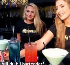 Vill du bli Bartender?